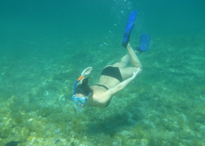 Guide for Snorkelers in Greece - What to look out for
